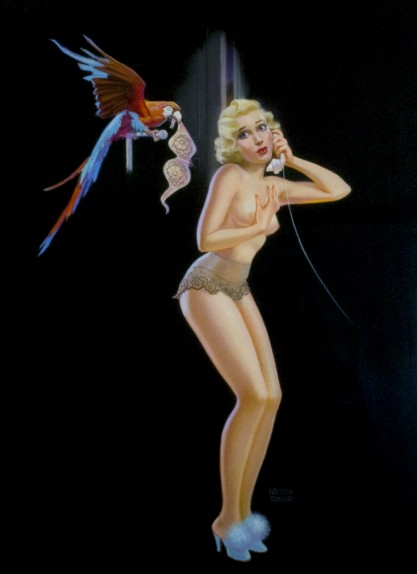 Full view of pastel pin-up illustration