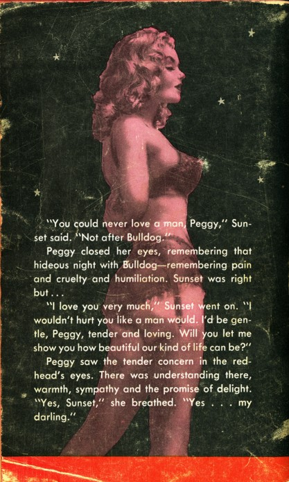 Back cover paperback image and text