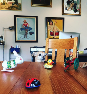 Chiweenie dog looking at antique toys with pin up paintings behind her